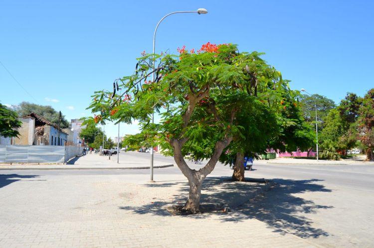 Calle de Benguela