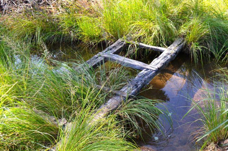 Puente sobre el riachuelo