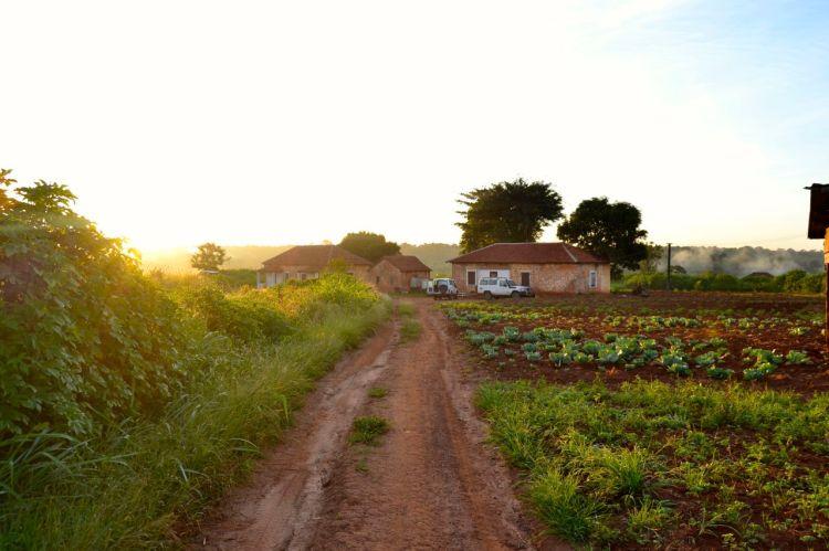 Nuestras casas en Kuemba a primera hora