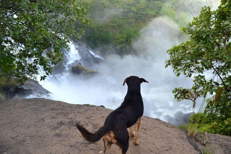 Hugo mirando la catarata del Kuemba