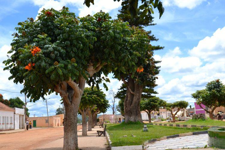 Jardines de Nharea