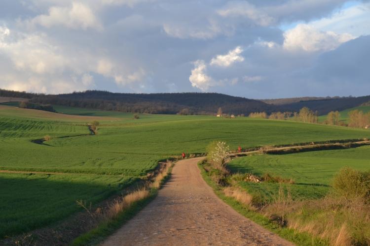 Camino de Tosantos