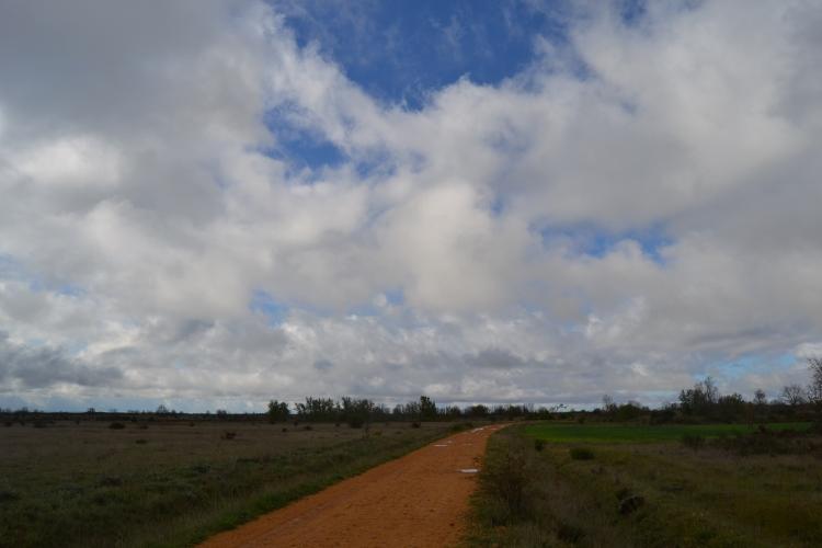 Camino de Chozas de Abajo