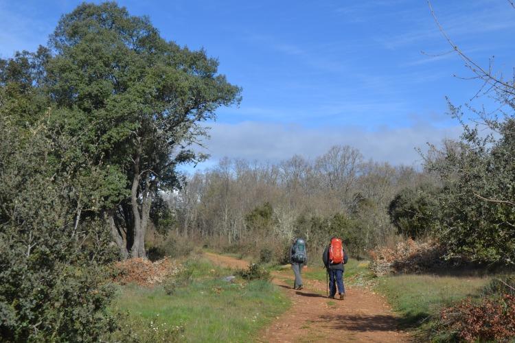 Camino de Astorga