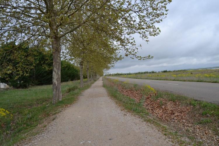 Camino de Mansilla de Las Mulas