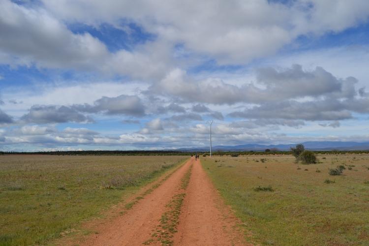Camino a Astorga