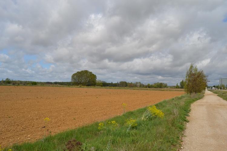 Camino de Puente Villarente