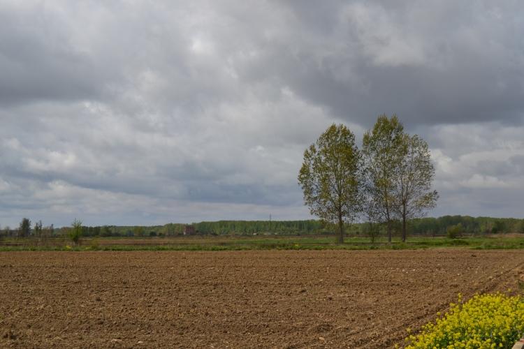 Camino de León