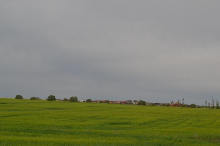 Camino de Burgo Ranero