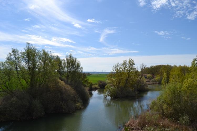 El Pisuerga desde el Puente Fitero