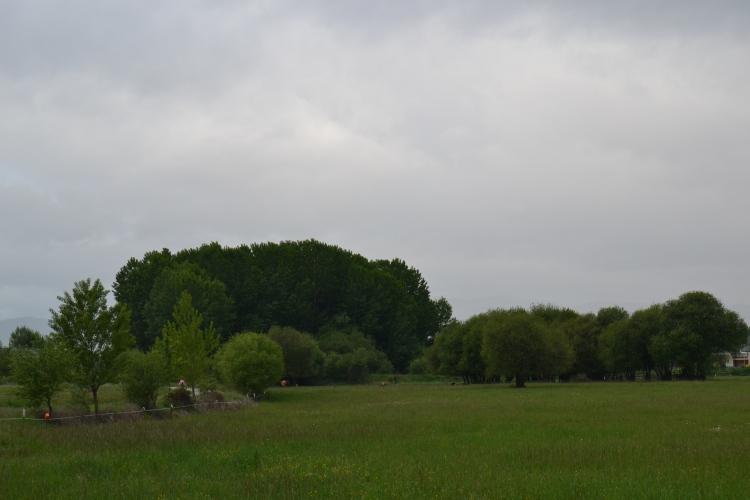 Camino de Camponaraya