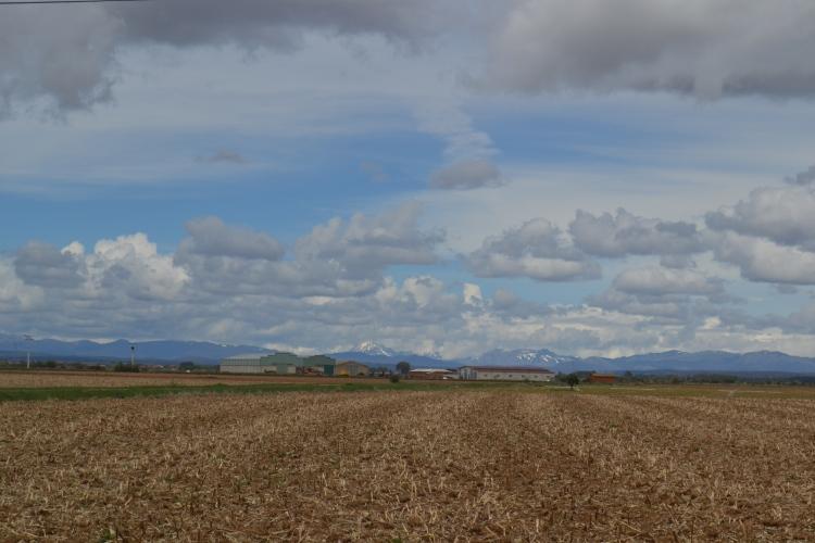 Camino de Villavante
