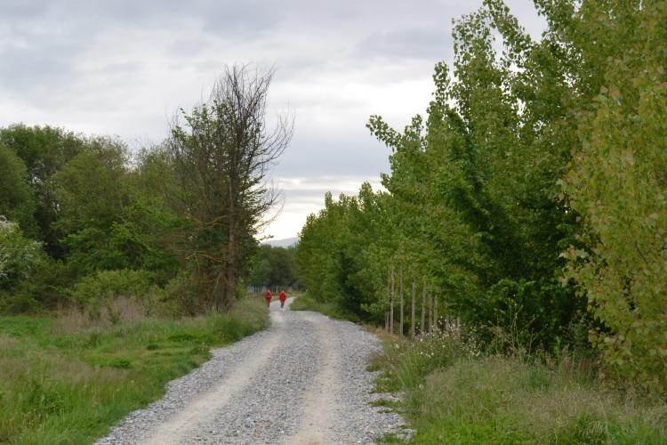 Camino de Cacabelos