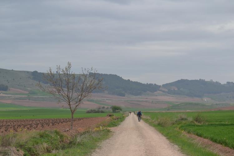De Nájera a Stº Domingo