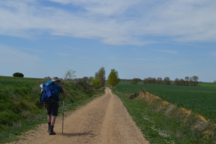 Camino de Boadilla del Camino