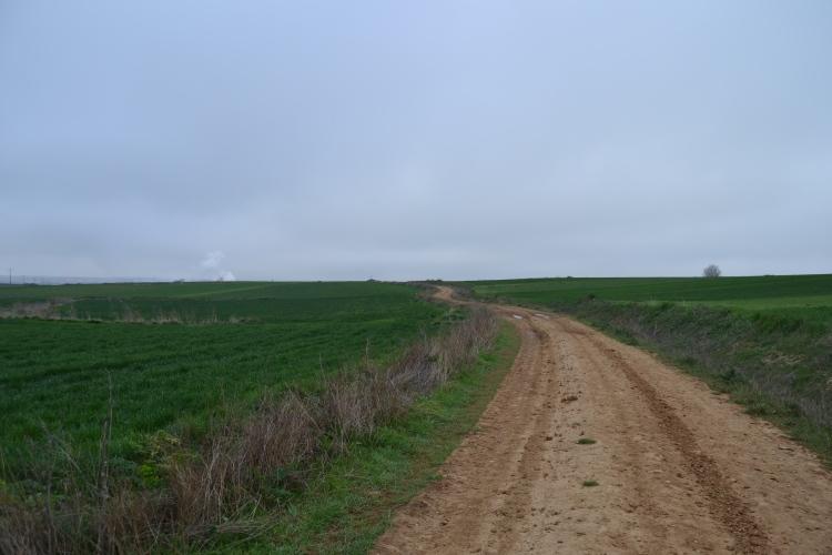 Camino a Castañares