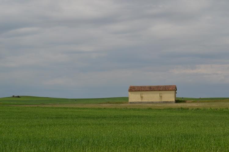 Camino de Villalcázar de Sirga