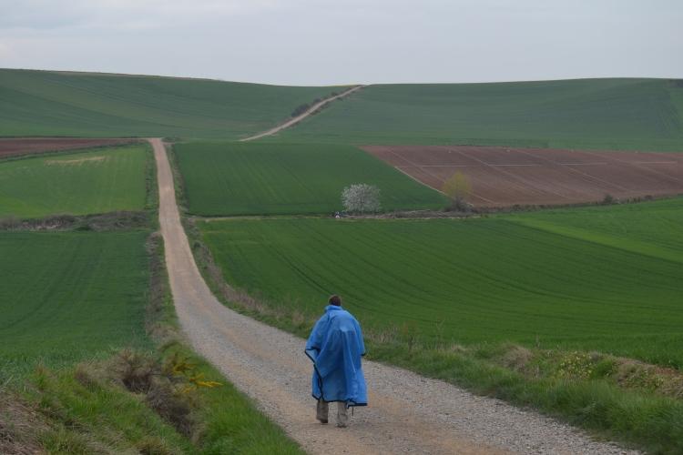 Camino de Stº domingo