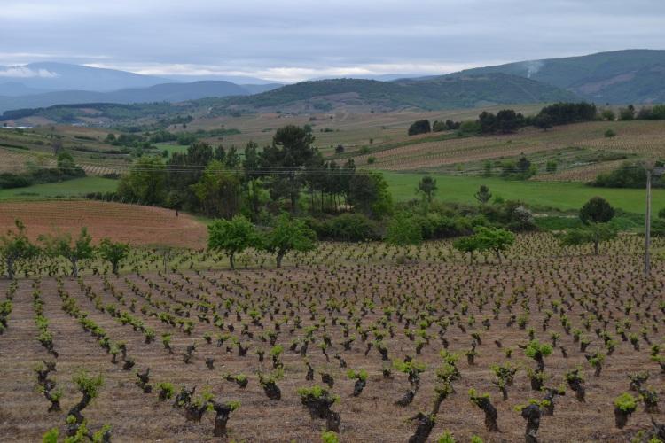 Camino de Villafranca