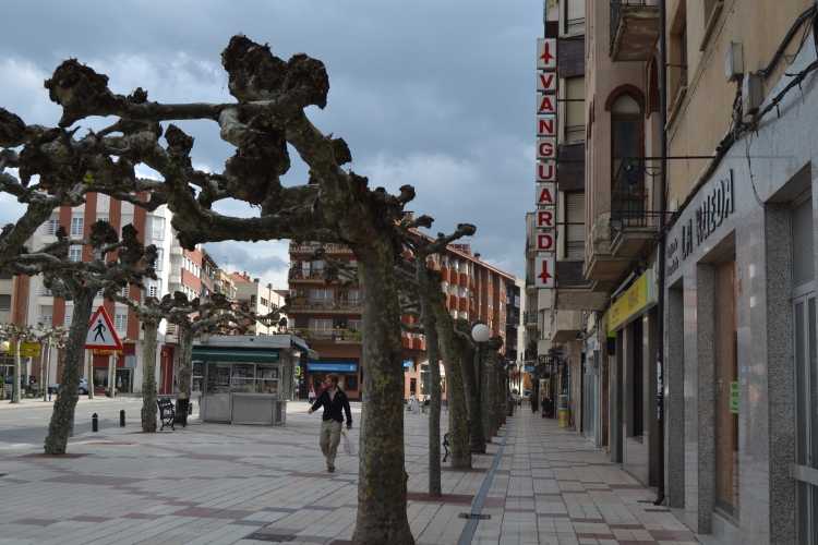 La calle mas comercial de Stº Domingo