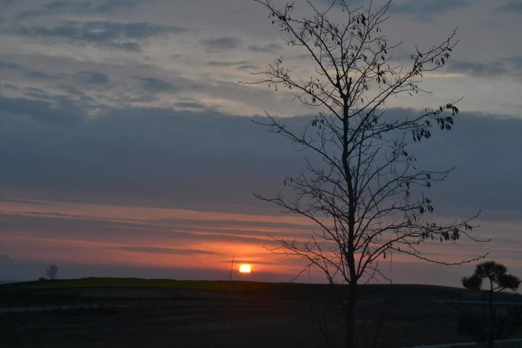 Sale el sol sobre Stº domingo de La Calzada