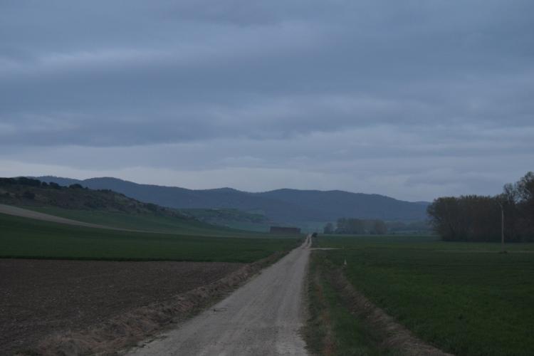 Camino de Grañón