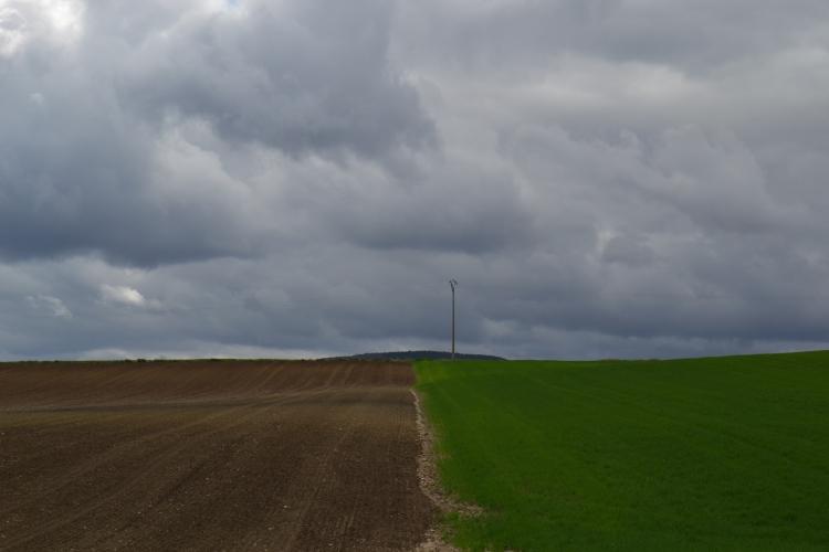 Camino de Belorado