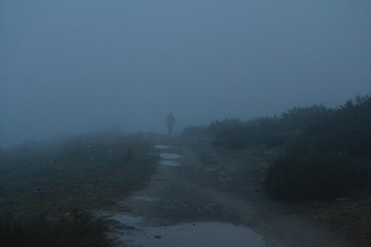 Desapareciendo en la niebla