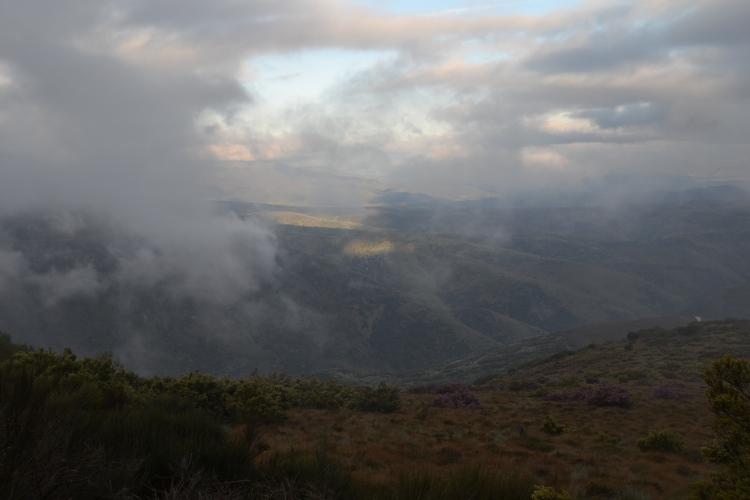 Disipándose la niebla camino de El Acebo
