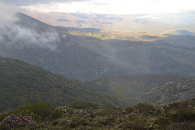 Disipándose la niebla. Camino de El Acebo