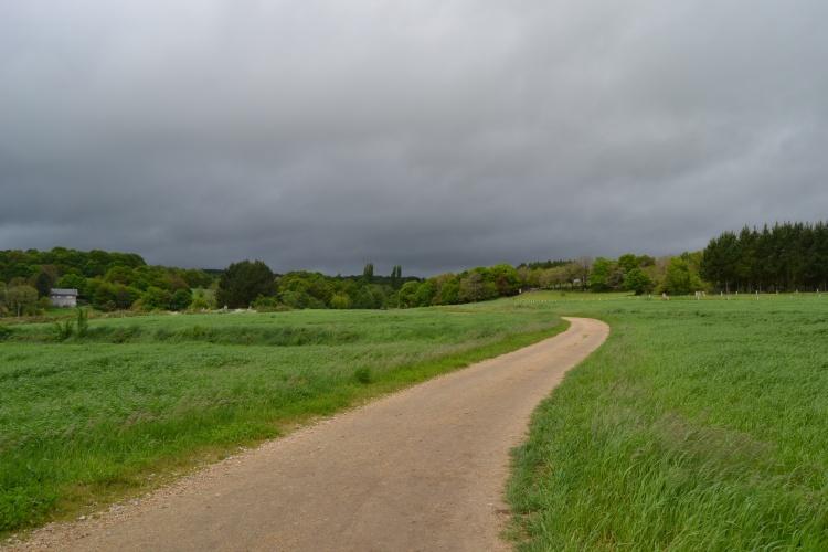 Camino de Morgade