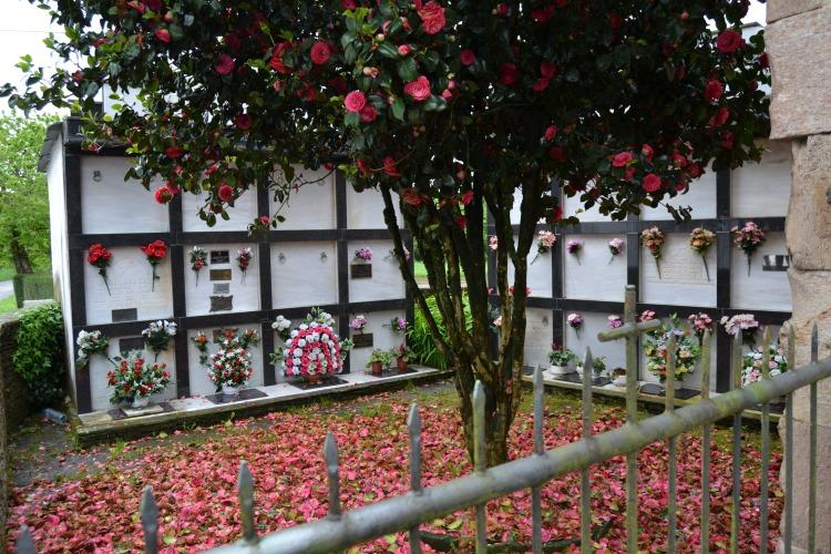 Cementerio de Castromaior