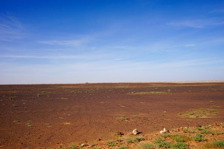 Otro color del Sahara. Camino Dajla.